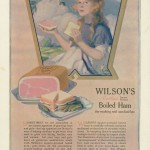 The Youth's Companion - July 15th, 1920 - Vol. 94 - No. 29